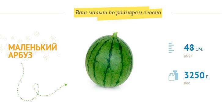 Размер плода на 39 неделе беременности