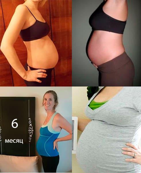 Фото животиков на шестом месяце беременности